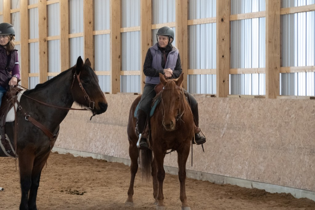 Working Equitation Feb 2 33