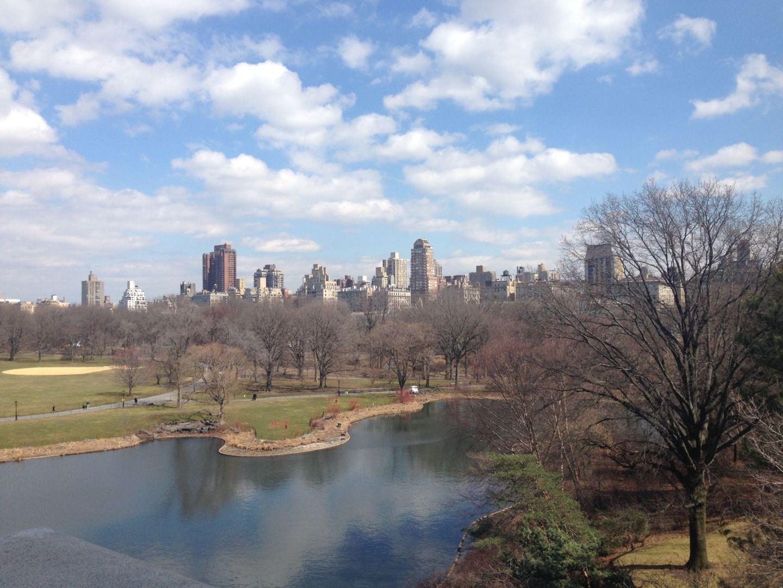 Central Park from Rockafella centre