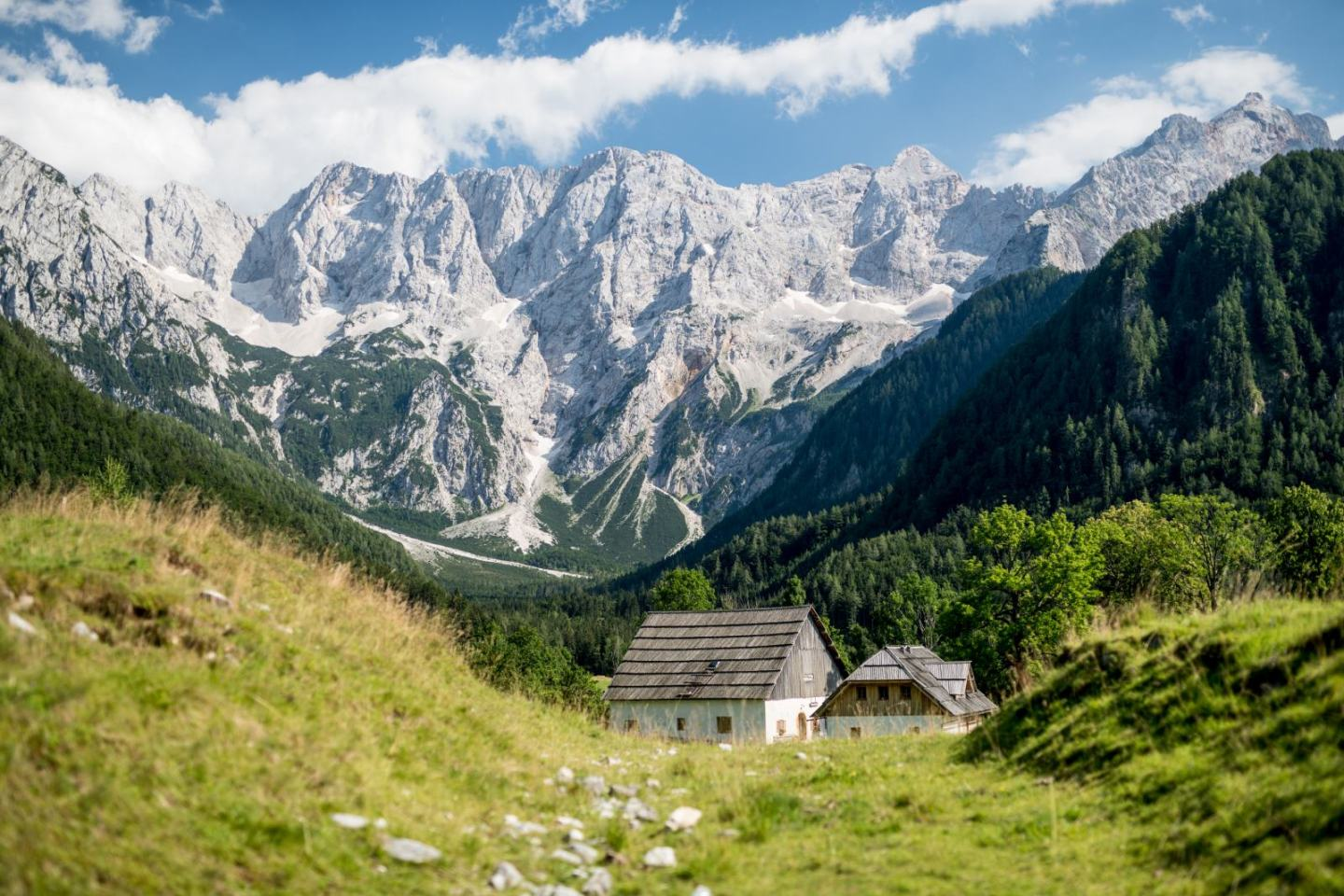 Delicious Reasons to consider a Slovenia Holiday
