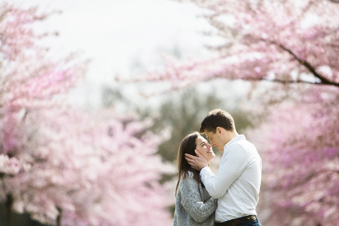 cherry blossom London engagement photography