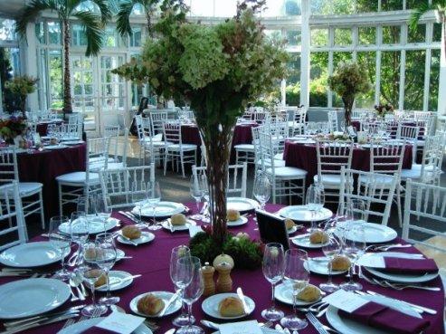 Brooklyn Botanical Garden november wedding.