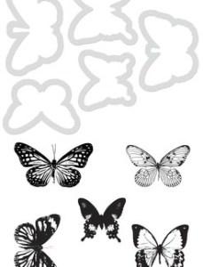 Kaisercraft Dies and Stamps Butterflies