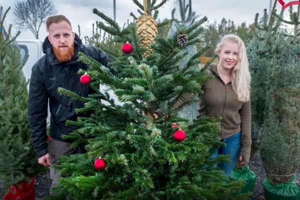 Kerstboombezorging.nl in het nieuws met kerstbomen bezorgen