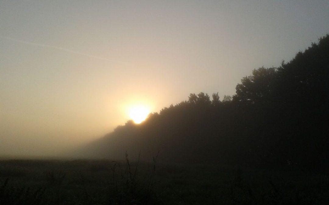 Ein Morgenstern geht im Herzen auf
