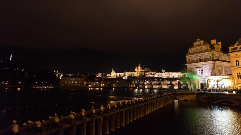 04 Prag, Tschechien, Czech Republic, birds, river, night