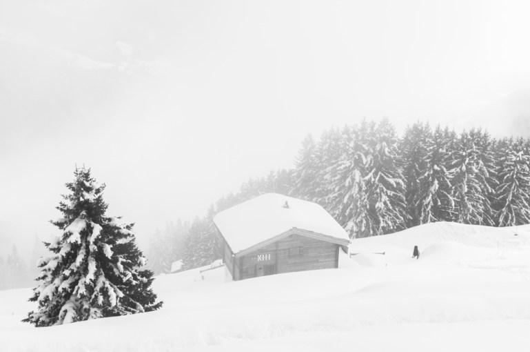Aletschgletscher_Schweiz_Europa_Winter Travel_Kerstin Musl_34