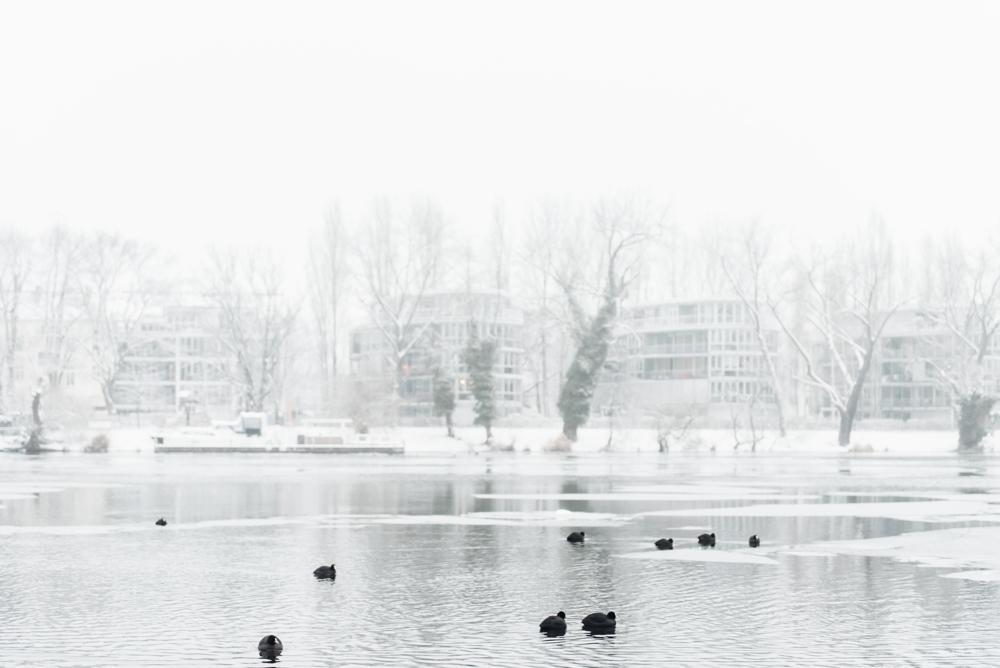 Graues Grau – Ein Berliner Wintergedicht