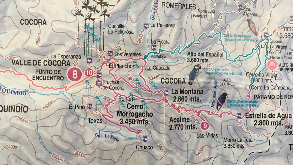 Salento-Valle del Cocora Colombia Southamerica_Travel_Kerstin Musl_01