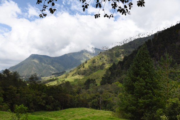 Salento-Valle del Cocora Colombia Southamerica_Travel_Kerstin Musl_11