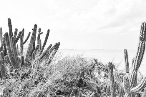 Punta Gallina_La Guajira_Colombia Southamerica_Travel_Kerstin Musl_066