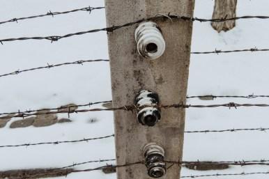 Polen Day 06_KZ Auschwitz - Birkenau_Winter 2018_Kerstin Musl_21