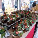 Kerstmarkt Doesburg 2011