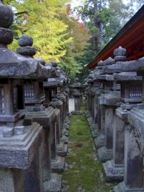 Kansai-Nara-japan-photography-pablo-kersz03