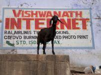 varanasi-india-asia-varanes-street-photography-kersz-64