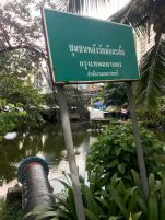 Images for bangkok thailand