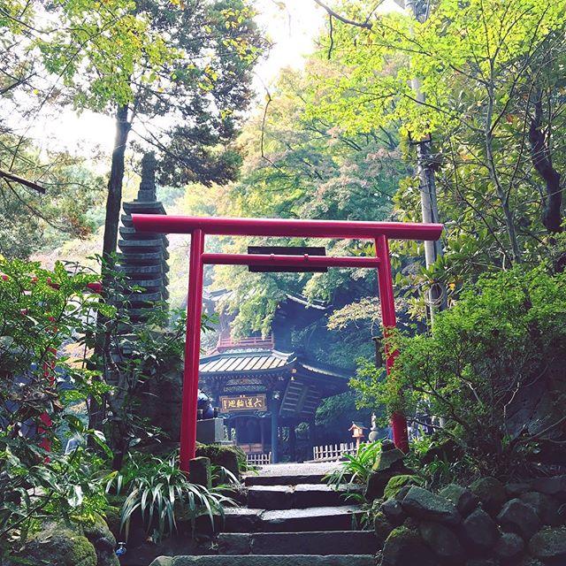 五徳山 水澤観世音(水澤寺)