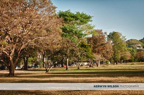 Queen's Park Savannah – One Thousand Words