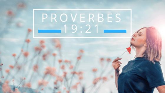 Nombreux sont les projets au cœur de l'Homme… Bonne année 2019! #65