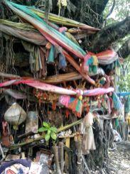bangkok arbre deco bouddhiste