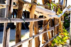 wooden-fence-gili-air