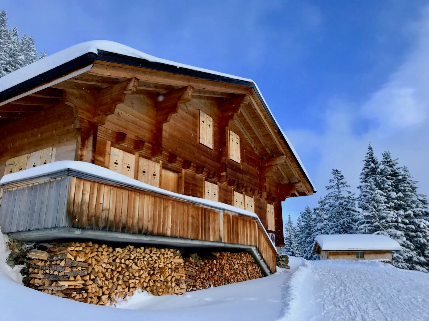 A Swiss chalet near Grindelwald in the Alpine recreation area. The bronze colored walls of the building are shuttered and an expansive wood pile tucks efficiently under the wrap around deck. It's a snowy scene with a groomed trail to the right and crisp blue sky above.