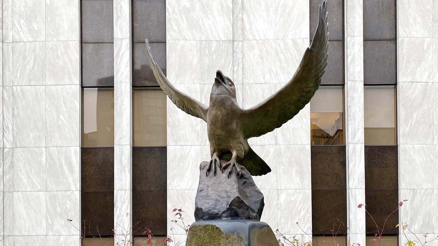 A bronze raven looks up to the sky with wings in full flap of flight. This art installment is located near the entrance to a white marble building on the campus of Seattle University.
