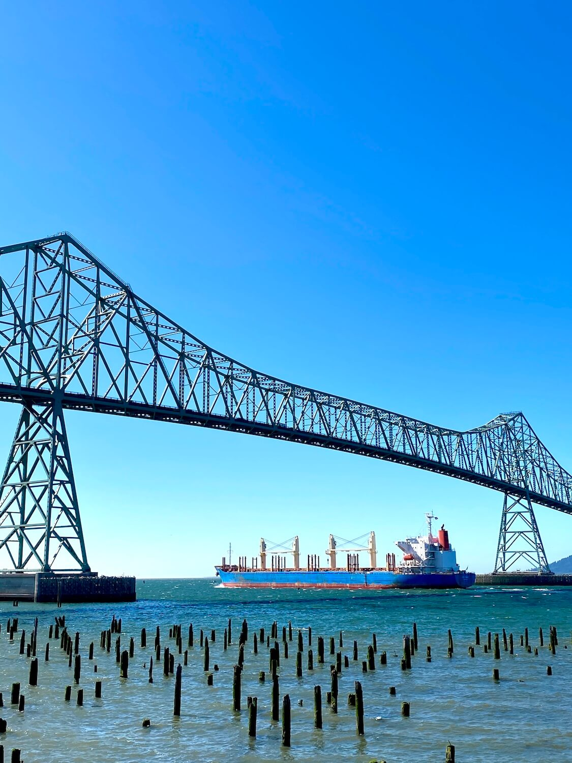 A large sea going vessel floats underneath the Astoria Bridge on the way out to sea. The ship is carrying grain and has a blue hull with white upper decks. The Astoria Bridge rises high up into the blue sky. Pacific Northwest travel always involves water.