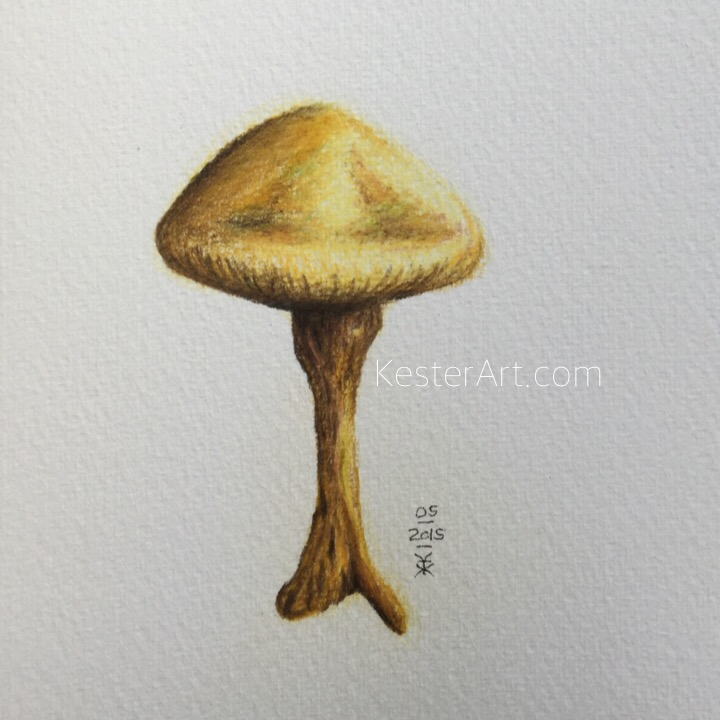 yellow mushroom made by color pencils