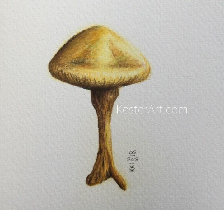 the yellow mushroom