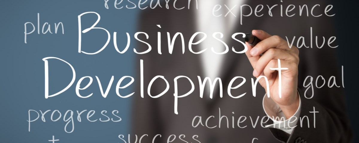 Why is Business Development important