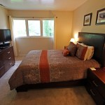 Master bedroom on main level with TV and DVD player