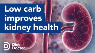 Low-carb diets improve kidney health