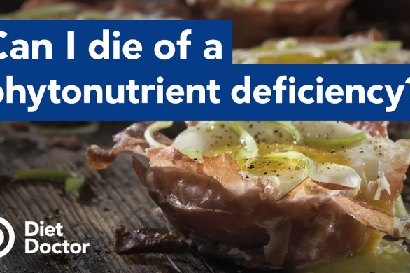 Are Keto Diets Deficient In Phytonutrients?