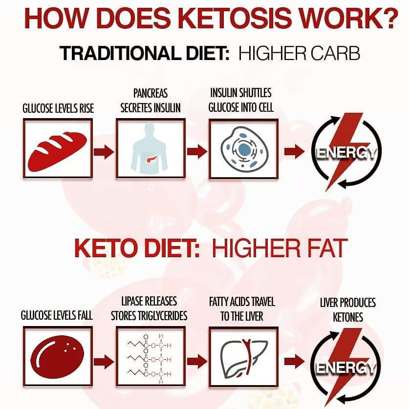 Updated KETO DIET PLAN FOR BEGINNERS STEP BY STEP GUIDE