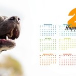 calendar-4565243_640