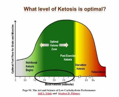Optimal Levels of Ketones for Ketosis