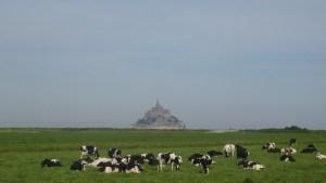 tour-de-france-des-contribuables-mont-saint-michel-5-1024x576