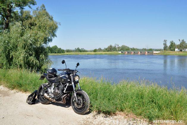 Am polnischen Oder-Ufer kurz vor Schwedt