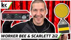 NEAT Worker Bee Focusrite Scarlett 2i2 | Setup and Demo