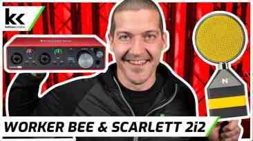 NEAT Worker Bee Focusrite Scarlett 2i2   Setup and Demo