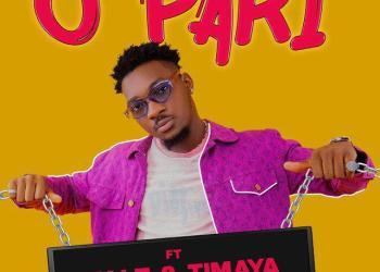 DJ Shawn – O Pari ft Falz & Timaya