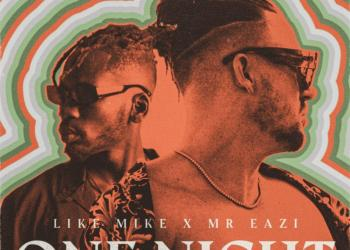 Like Mike – One Night ft. Mr Eazi