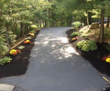 fall planting along walkway