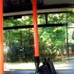 Napi panoráma: 153 -a busz
