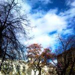 Ősszel az ég…