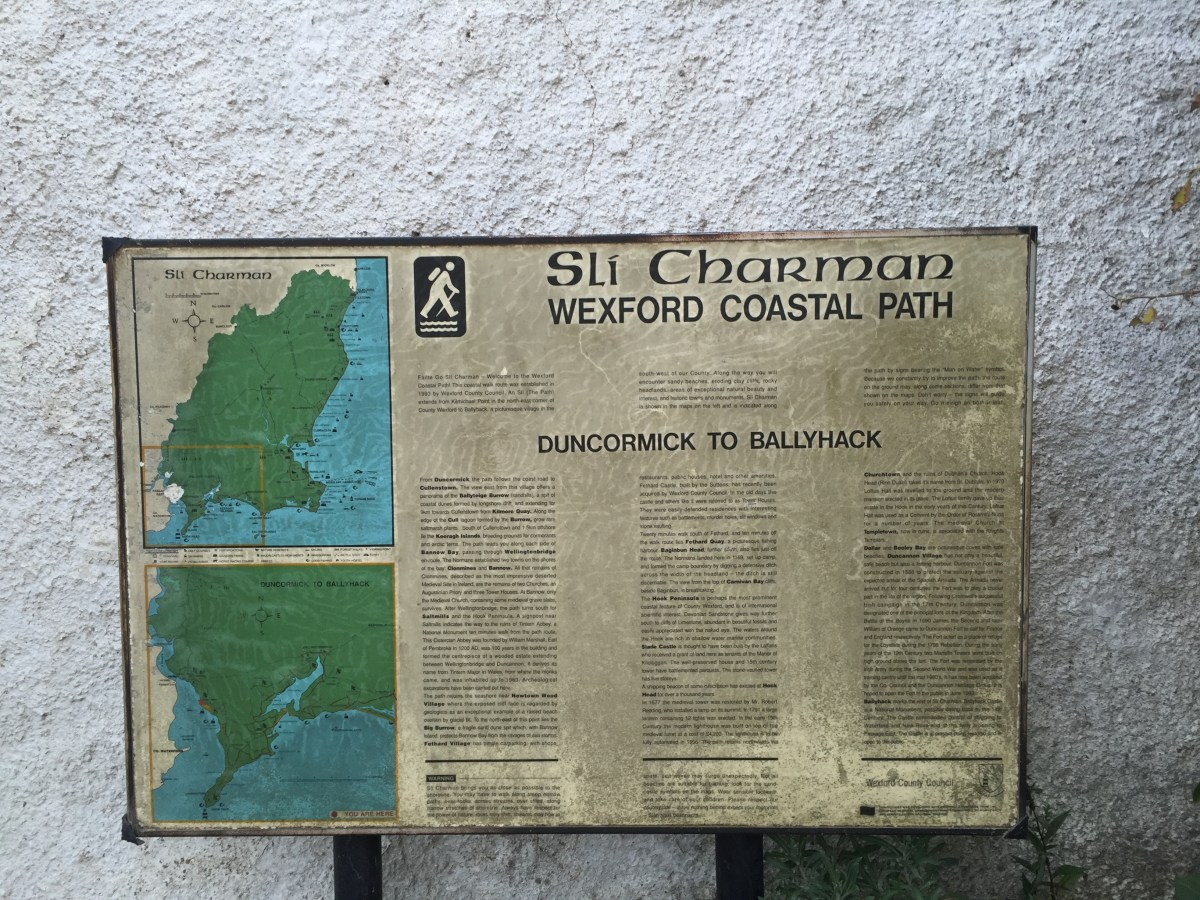 The Wexford Way Chapter 3