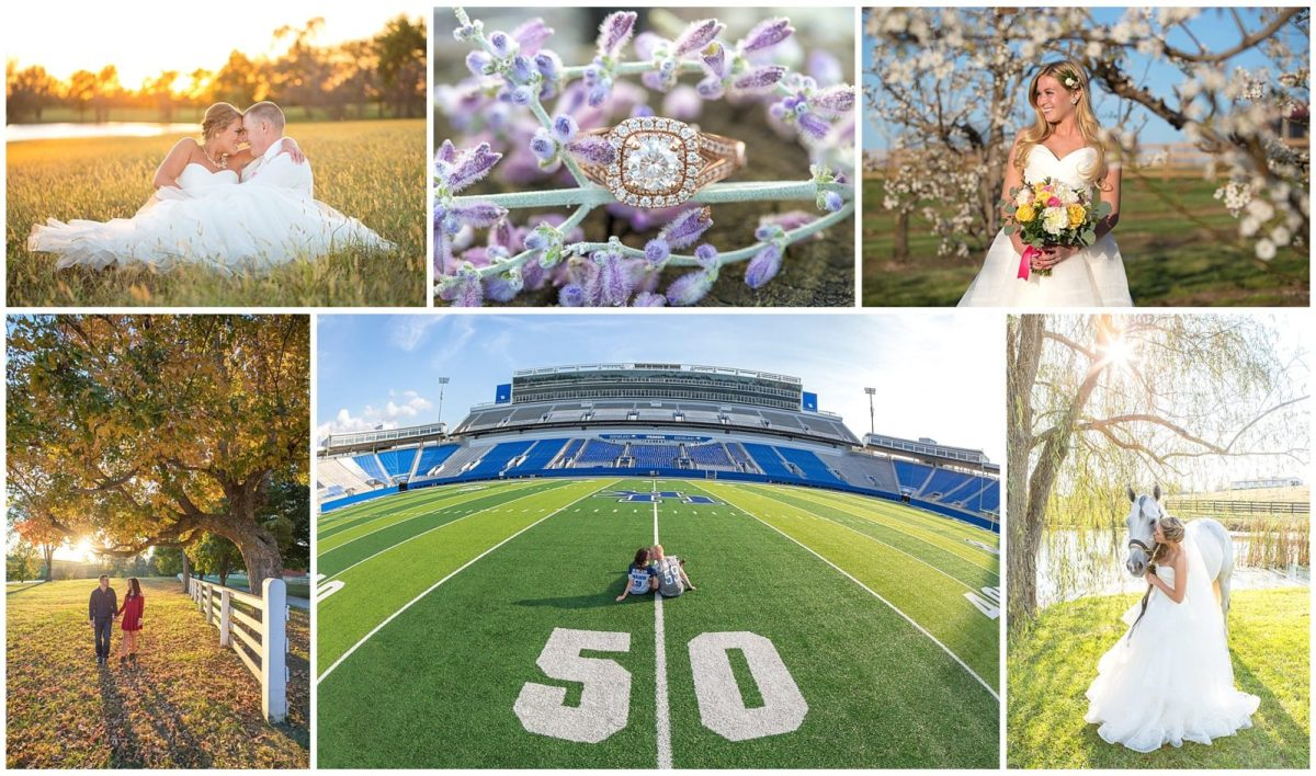 Collage of engagement photos and weddings in Lexington, KY