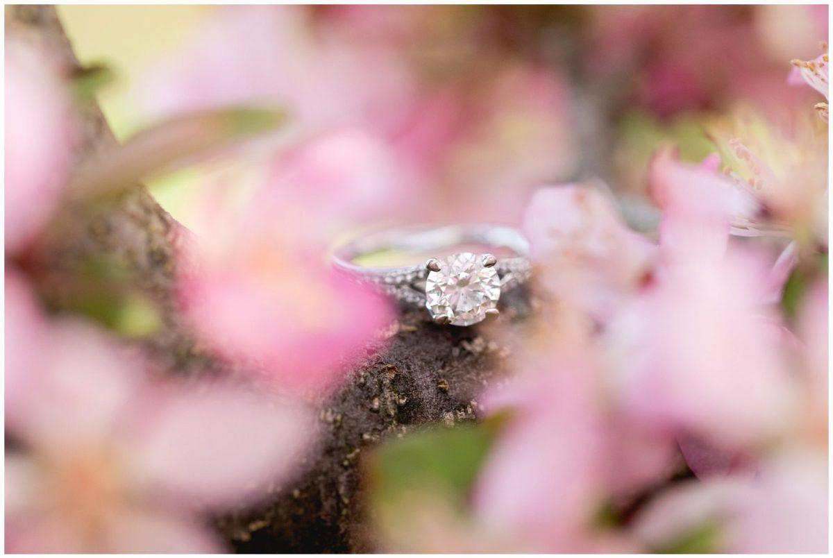 Spring Engagement Session at Gratz Park and the Arboretum in ...