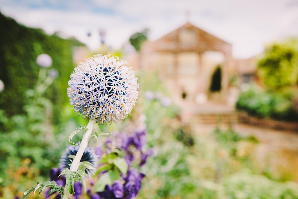 Rockley_Manor_Wedding_Photographer-10