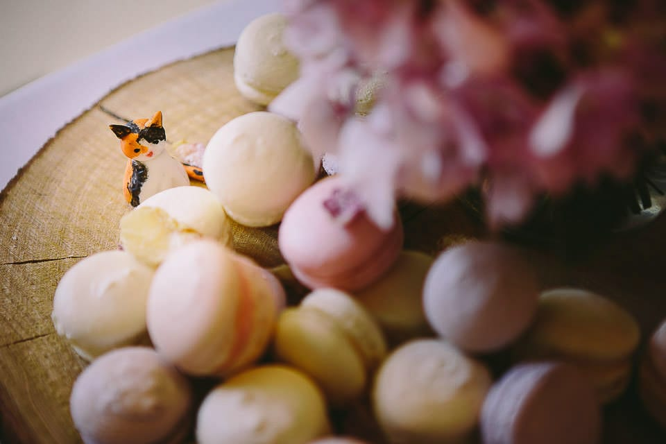 Close up of macaroons and marzipan cat